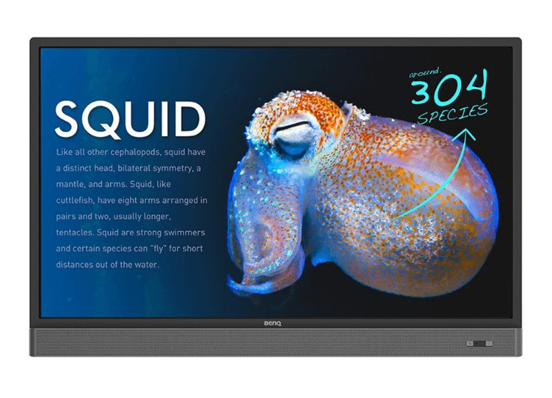 RP553K, benQ, interactive flat panel, panel, interactive, education
